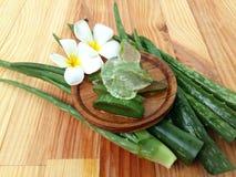 Aloe vera così fresca per la stazione termale e la bellezza su fondo di legno Fotografia Stock Libera da Diritti