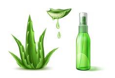 Vector aloe vera realistic cosmetic spray tube ad. Aloe vera cosmetics spray tube mockup ad elements. Vector skincare moisturizer bottle, container template Stock Photos