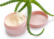 Aloe vera and cream Stock Images