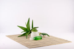 Aloe Vera. Aloe cream and butter it on a bamboo plate on a white background stock images