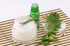 Aloe Vera. Aloe cream and butter it on a bamboo plate on a white background stock image