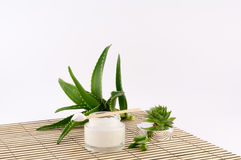 Aloe Vera. Aloe cream and butter it on a bamboo plate on a white background royalty free stock photo