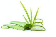 Aloe vera della fetta su fondo bianco Fotografia Stock