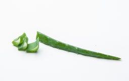Aloe vera della fetta su fondo bianco Fotografie Stock Libere da Diritti