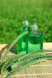 Aloe Vera in der Kosmetik lizenzfreies stockfoto