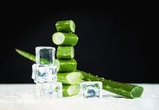 Aloe Vera e cubetti di ghiaccio su buio Fotografia Stock