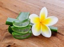 Aloe vera e fiore del frangipane Fotografie Stock