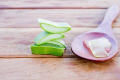 Aloe vera e gel Fotografia Stock
