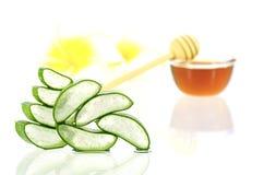 Aloe vera e miele per capelli ed il trattamento facciale Immagini Stock Libere da Diritti