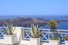Aloe vera e piante del othe nel balcone in Thira, Santorini isl Fotografia Stock Libera da Diritti