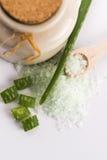 Aloe vera e sale marino Fotografie Stock Libere da Diritti