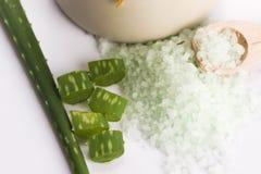 Aloe vera e sale marino Immagini Stock Libere da Diritti