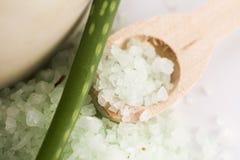 Aloe vera e sale marino Immagine Stock