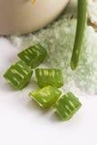 Aloe vera e sale marino Fotografia Stock