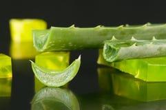 Aloe vera e sapone Fotografie Stock Libere da Diritti