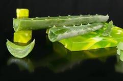 Aloe vera e sapone Fotografia Stock Libera da Diritti