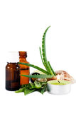 Aloe vera essential oil Stock Photos