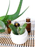 Aloe vera essential oil Royalty Free Stock Image