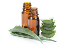 Aloe vera essential oil Royalty Free Stock Photography