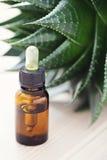 Aloe vera essential oil Stock Image