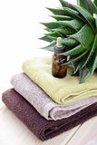 Aloe vera essential oil Royalty Free Stock Images