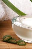 Aloe vera - fogli e crema di fronte Immagine Stock