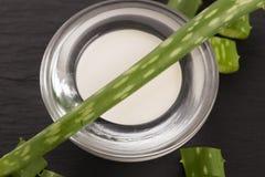 Aloe vera foglie e crema Fotografia Stock