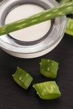 Aloe vera foglie e crema Immagini Stock Libere da Diritti