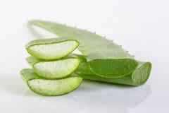 Aloe Vera Fresh Aloe Vera Fresh Fotografie Stock