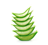 Aloe vera fresh leaf Stock Photos