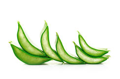 Aloe vera fresh leaf Royalty Free Stock Photo