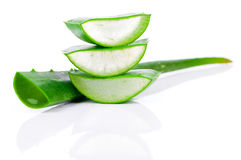 Aloe vera fresh leaf Royalty Free Stock Images
