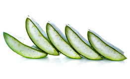 Aloe vera fresh leaf. Royalty Free Stock Photography