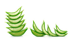 Aloe vera fresh leaf. isolated over white Royalty Free Stock Photos