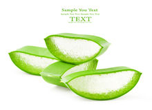 Aloe vera fresh leaf. Royalty Free Stock Photos