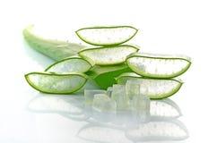 Aloe vera fresh leaf isolated white background royalty free stock photos