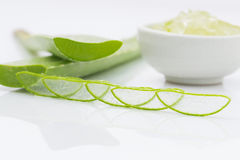 Aloe vera fresh leaf  water can help neutralize free radicals Co Royalty Free Stock Photography