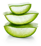 Aloe vera fresh leaf Stock Image