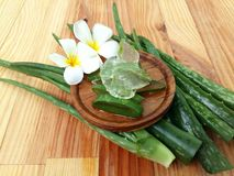 Aloe Vera so frisch für Badekurort und Schönheit auf hölzernem Hintergrund Lizenzfreies Stockfoto