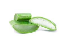 Aloe Vera-frisches Blatt Lizenzfreies Stockbild