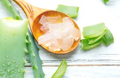 Free Aloe Vera Gel Closeup On White Wooden Background. Organic Sliced Aloevera Leaf And Gel, Natural Organic Cosmetic Ingredients Stock Photography - 121985942