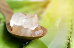 Aloe Vera Gel in cucchiaio di legno con aloe Vera Leaves Background Immagine Stock