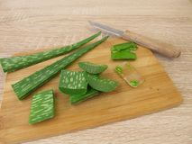 Aloe vera gel and leaves Stock Images