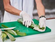 Aloe Vera Gel och klippt aloe Vera Leaves Aloe Vera stelnar n?stan bruk i mat-, medicin- och sk?nhetbransch royaltyfria foton