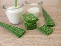 Aloe vera gel in yogurt Stock Photography