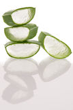 Aloe vera green fresh leafs sliced isolated over white backgroun Stock Images