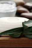 Aloe vera grooming product Stock Photography