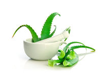 Aloe vera herbal medicine Royalty Free Stock Images