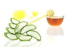 Aloe vera and honey for hair and facial treatment. Royalty Free Stock Images