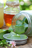 Aloe vera, honey for skin care. Nutrition food from aloe vera leaf and honey, a nature cosmetic for skin care from herb, also   use as medicine for health Royalty Free Stock Photos